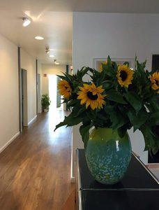 Praxisanmeldung mit Sonnenblumen